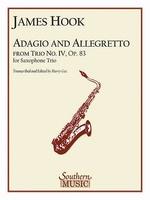 Adagio and Allegretto