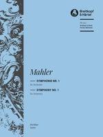 Mahler - Symphony No. 1