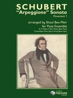 """""""Arpeggione"""" Sonata Movement 1"""