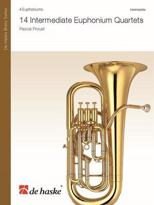 Brass Contemporary Painstaking Nightingale Lucky Dip Euphonium Bass & Treble